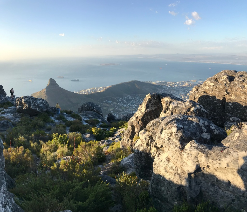 In cima alla Table Mountain